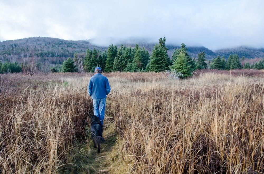 Strolling thru a field on Cape Breton